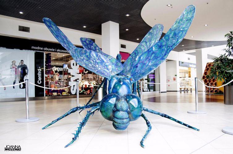 Wystawa owadów w Galerii Leszno